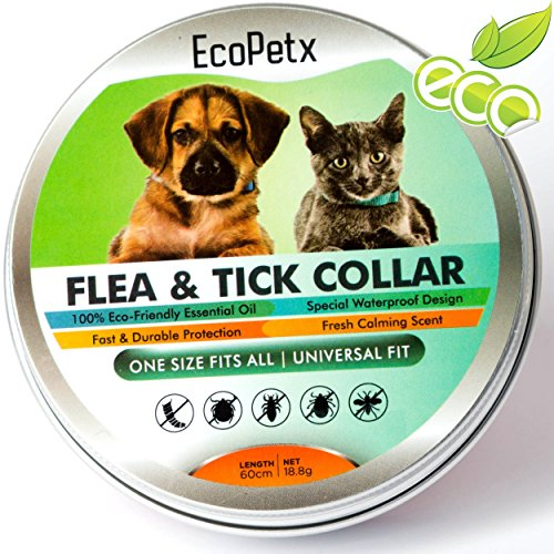 Best Rated Flea Medicine For Dogs