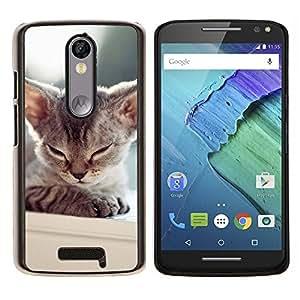 KLONGSHOP // Cubierta de piel con cierre a presión Shell trasero duro de goma Protección Caso - Gatito soñoliento del gato de Tonkinese balinesa - Motorola Moto X3 3rd Generation //