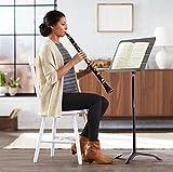 AmazonBasics Sheet Music Stand