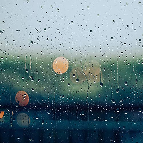 20 Peaceful Ambient Rain Recordings for Relaxation, Focus, and Sleep (Loop)