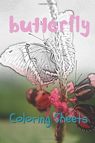 Amazon.com: Butterfly Coloring Sheets: 30 butterflies drawings ...