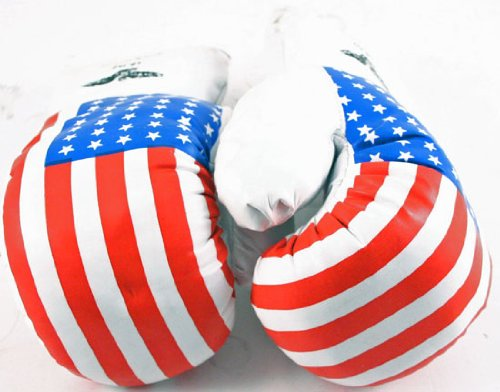 1 Pair USA Flag 10 oz Boxing Punching Gloves