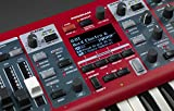 Nord Electro 6D 73 Stage Piano, 73-Note