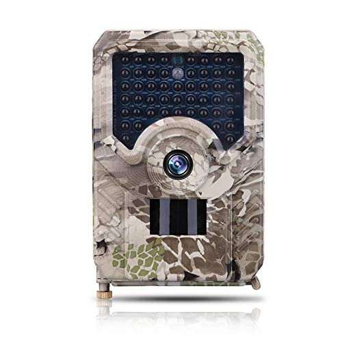 Display 42 Lcd 1080p (Trail Camera,12MP 1080P HD Wildlife Scouting Hunting Camera with Motion Activated Night Vision, 2.4