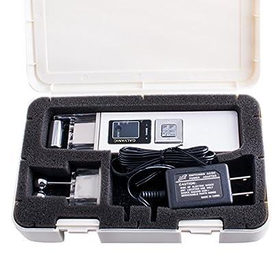 Enshey Portable Galvanic Microcurrent