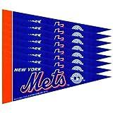 New York NY Mets MLB Mini Pennant Set (8)