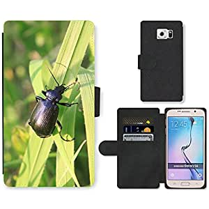 PU LEATHER case coque housse smartphone Flip bag Cover protection // M00135200 Escarabajo Negro Calosoma Carabidae // Samsung Galaxy S6 (Not Fits S6 EDGE)