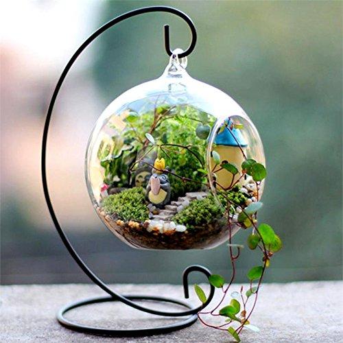 BalsaCircle 4 pcs Globe Glass Floating Terrariums - Hanging Bowl Plants Wedding Party Centerpieces Decorations Home -