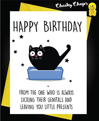 Tarjeta de cumpleaños divertida para gatos con diseño de gato pequeño regalo C438: Amazon.es: Oficina y papelería