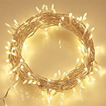 EShing 33ft 100 LED Transparent Wire Fairy String Lights with DC 12V Power Adapter for Wall, Garden, Lawn, Patio, Wedding, Party, Indoor Decorations