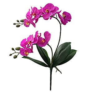 RainbowCo Artificial Orchid Flowers for Decoration- Artificial Orchid Branch for Home Decor- Artificial Orchid Plants for Home Decor Indoor- Fake Flowers for Decoration in Vase- Silk Flowers in Vase 23