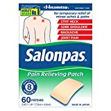 Health & Personal Care : Salonpas Pain Relieving Patches,  60 Count