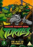 Teenage Mutant Ninja Turtles, Vol. 3: The Way Of Invisibility [2003] [DVD]