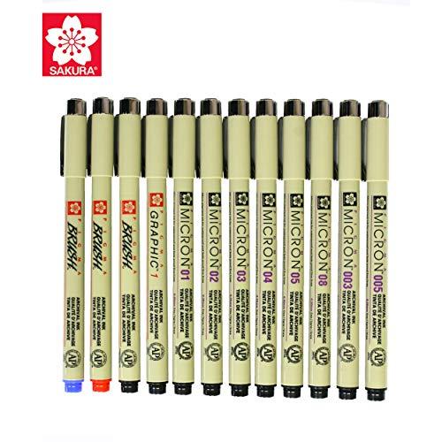 Sakura 12 Pcs Pigment Liner Pigma Micron Ink Fine Line Pen Set 003 005 01 02 03 04 05 08 Graphic 1 & Brush(Red,Blue,Black) ()