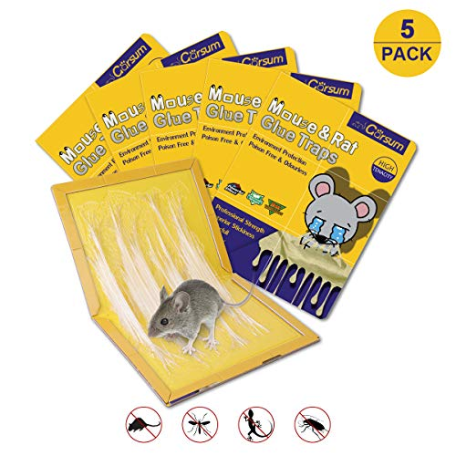 Garsum Mouse Trap 5 Pack/Rat Trap,Sticky Traps for Mice,Large Rat Glue Pads,Extra Sticky Traps with Peanut Butter Large Capture Area,Catch Mouse Indoor and Outdoor (5 Pack)