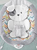 Fisher-Price Sweet Snugapuppy Deluxe