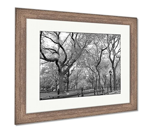 Ashley Framed Prints Central Park, Wall Art Home Decoration, Black/White, 34x40 (Frame Size), Rustic Barn Wood Frame, -