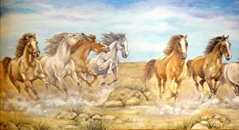 Image Unavailable. Image not available for. Colour: Wild Horses Wallpaper Border 5m