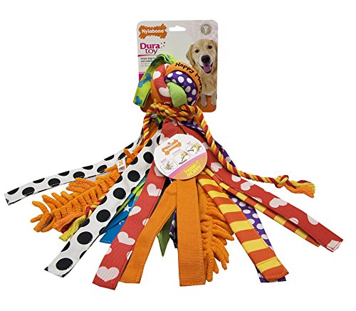 Nylabone Interactive Large Happy Moppy Dog Chew Toy