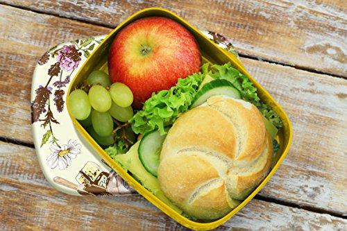 Brotdose Lunchbox Retro Bio Kräuter bedruckt Küchenmotiv