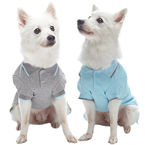 - Blueberry Pet Pack of 2 Back to Basic Cotton Blend Dog Polo Shirts in Sky Blue and Light Grey, Back Length 16