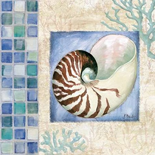 - Mosaic Shell Collage V Poster Print by Paul Brent (12 x 12)