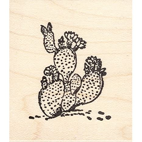 Amazon Small Flower Cactus Rubber Stamp Arts Crafts Sewing