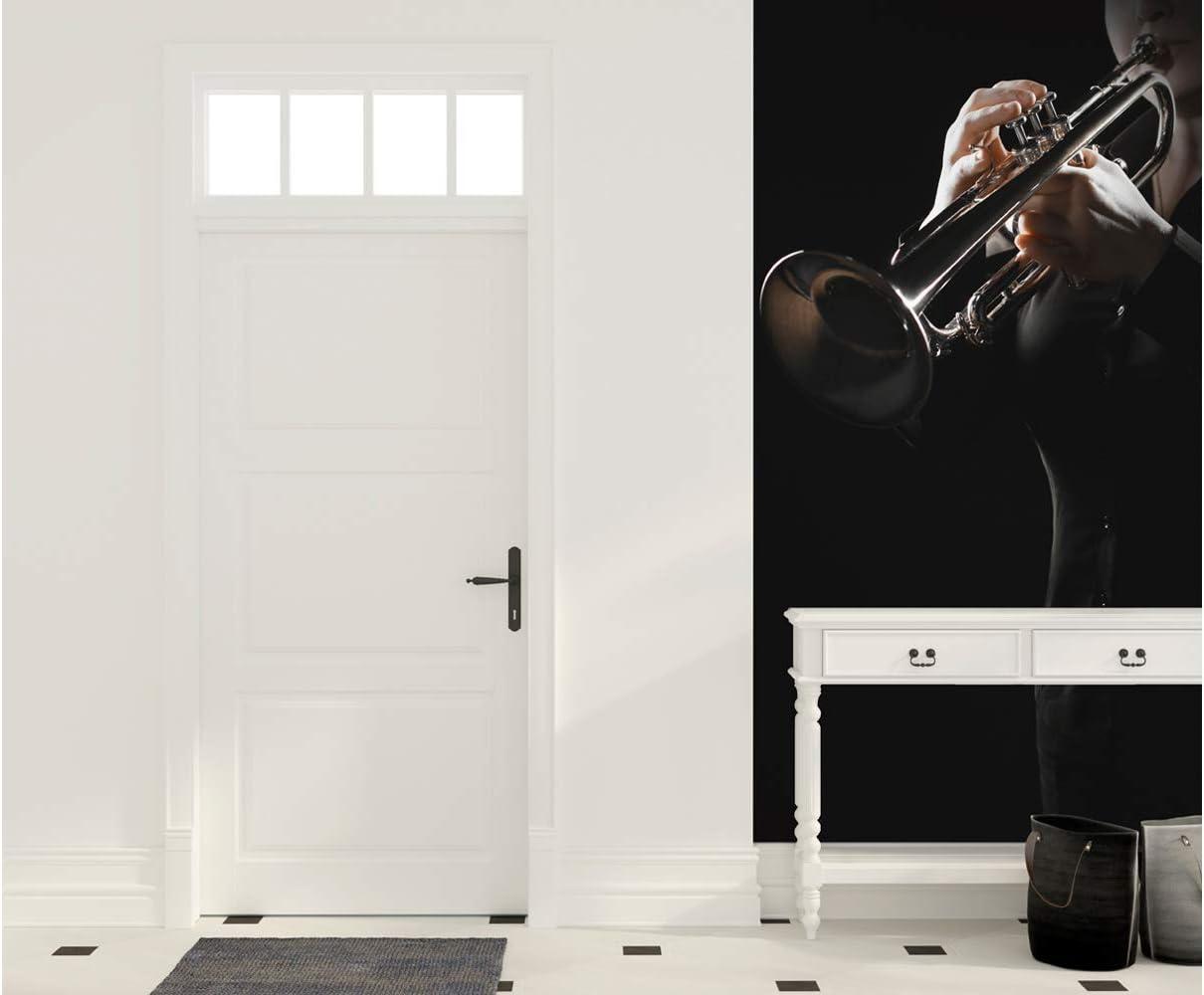 Oedim Cenefa Vertical Entradita PVC Pared Trompeta | 200 x 240 cm | Decoración: Amazon.es: Hogar