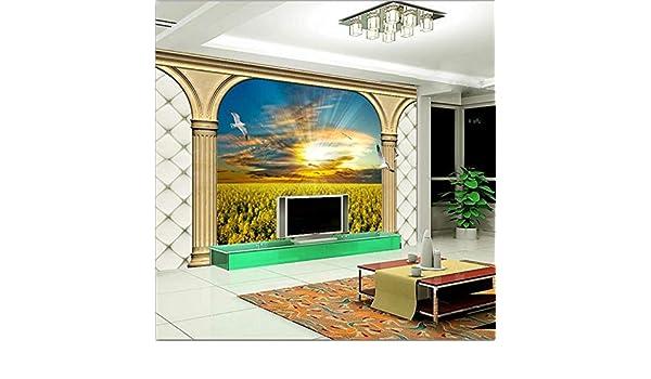 Fiartel Gran fondo de pantalla personalizado Hope Sunny Dream Field European 3D estéreo TV telón de fondo -430X300CM: Amazon.es: Bricolaje y herramientas
