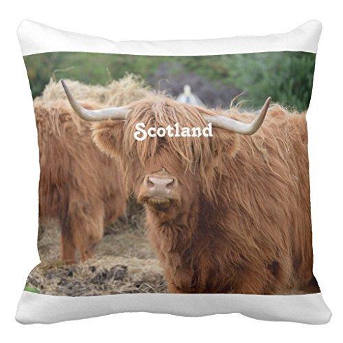 Sinluen Highland Cow - Funda de cojín para guardería con ...