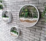 Wall Vase Metal Iron Art Hanging Flower Basket Round Shape Solid Color Wall Planter Decor Adornment Bonsai Creative Flower Wall Vase