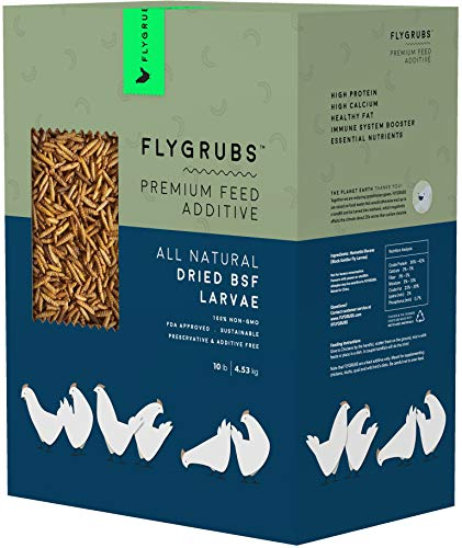 FLYGRUBS Superior to Dried Mealworms for Chickens (10 lbs) - Non-GMO - 85X More Calcium Than Meal Worms - Chicken Feed & Molting Supplement - FDA Approved BSF Larvae Treats for Hens, Ducks, Birds