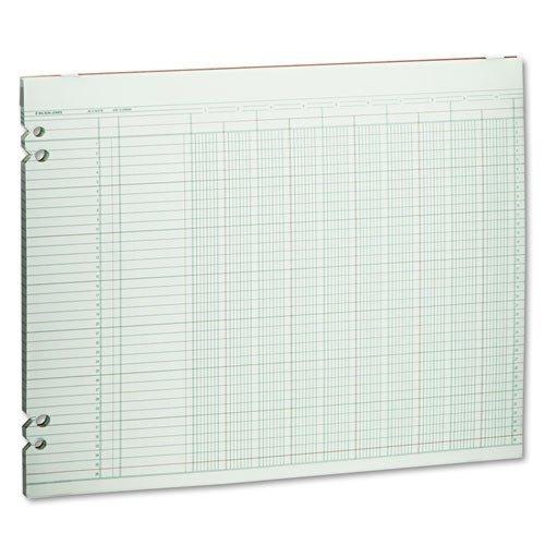 Wilson Jones - Accounting Sheets, 10 Columns, 11 x 14, 100 Loose Sheets/Pack, Green G30-10 (DMi PK