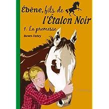 ÉBÈNE FILS DE L'ÉTALON NOIR T01 : LA PROMESSE