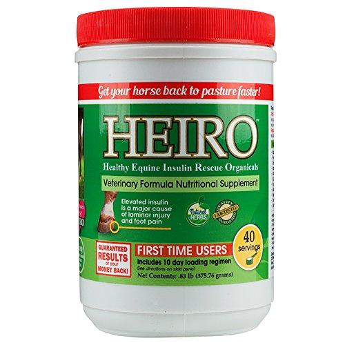 Heiro Healthy Equine Horse