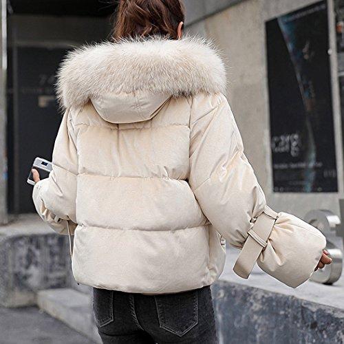 Doudoune Courte Beige Coton avec Hiver Coton Manteau Veste de Capuche HANMAX de Mignon Femme Fourrure Coton en Duvet Chaude SUI4YqRw