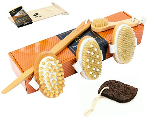 6 Piece Premium Dry Brushing Body Brush Set - Natural Boar Bristle Body Brush, Exfoliating Face Brush, Cellulite and Lymphatic Smoothing Brush, Ultimate Detox Brush, Volcanic Pumice Stone - Skin Care (Best Detox For Cellulite)