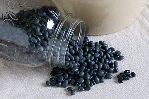 Pickled Whole (David's Garden Seeds Bean Dry Midnight Black Turtle Soup SL86A (Black) 100 Heirloom Seeds)