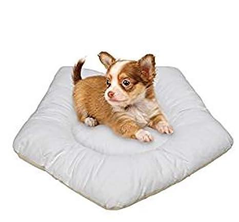 MEIQI Casa Perro Tienda Perro Lavable Cama Gato De Lona,Cushion
