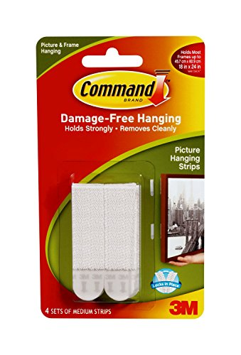 Sticky Foam Garden (Command Picture Hanging Strips, Medium, White, 4-Pairs (17201-4PK-ES))