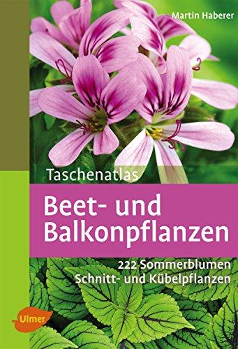 Amazon Com Taschenatlas Beet Und Balkonpflanzen 222 Sommerblumen