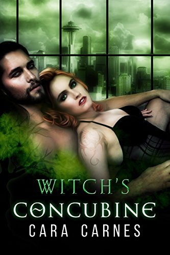 Witch's Concubine by Cara Carnes