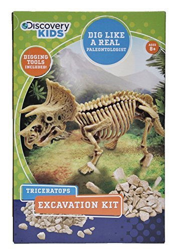 Discovery Kids Dinosaur Excavation Kit (TRICERATOPS) Fossil Model Bones Skeleton - with Digging Tools (Skeleton Wooden Kit)