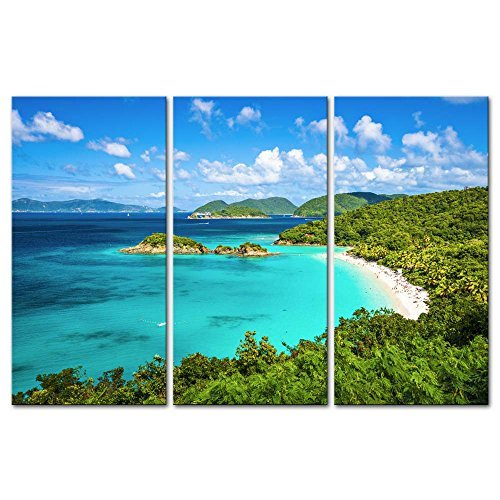 Trunk Wall - 3 Pieces Modern Canvas Painting Wall Art The Picture For Home Decoration Trunk Bay St John Virgin Islands United States Seascape Beach Print On Canvas Giclee Artwork For Wall Decor