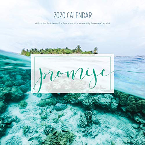 2020 Promise Calendar, Christian Wall Calendars, Photos, Bible Verses, Planner (12 x 12 inch) ... ()
