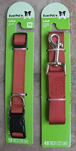 Everpet Nylon Collar/Leash/Harness, New, Medium (Color: Terra Cotta) by EverPet