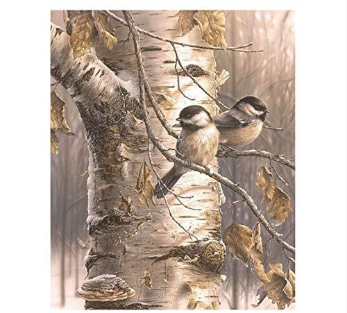 QAZZSF Pájaros Pintura DIY por Números Pintura Acrílica sobre Lienzo Pintado A Mano Pintura Al Óleo para La Pintura Moderna De La Caligrafía 40X50CM