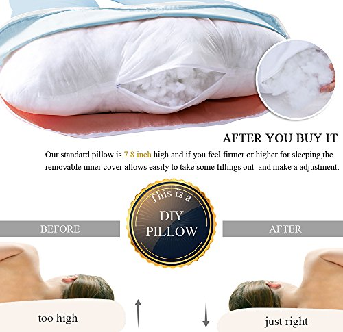QUEEN rose bush utmost Pregnancy Pillow Kitchen cusine Features