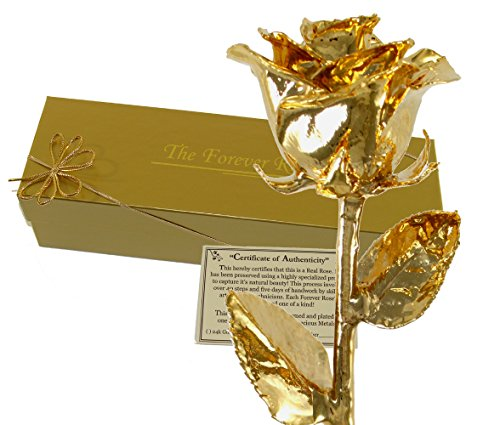 24K Gold Dipped Real Rose w/ Gold Gift Box!