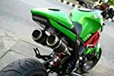 Dual High Mount Aodonly Racing Exhaust For Honda